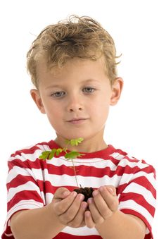 Free Young Boy Holding Plant Stock Photo - 7058490