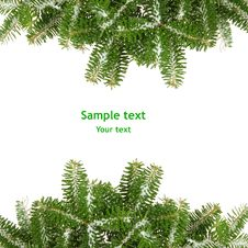 Free Background With Pine Branches Stock Photos - 7058923