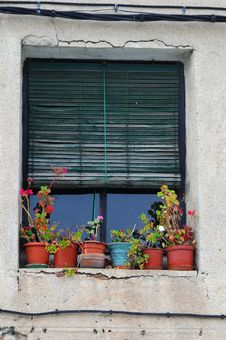 Free Old Window Stock Photo - 7059010