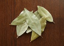 Free Bay Leaves Stock Photos - 7059733