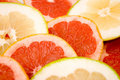 Free Grapefruits Royalty Free Stock Images - 7060929