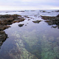 Free Tide Pools Royalty Free Stock Photography - 7067447