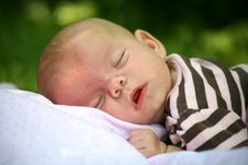 Free Outdoor Nap Stock Photography - 7060062