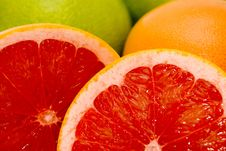 Free Grapefruits Stock Photo - 7060620
