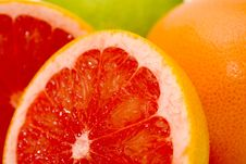Free Grapefruits Stock Photos - 7060633