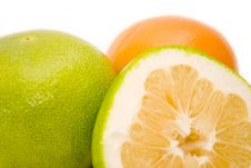 Free Grapefruits Royalty Free Stock Photography - 7060877