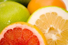 Free Grapefruits Royalty Free Stock Photos - 7060898