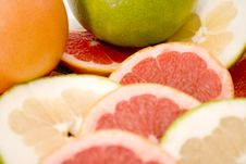 Free Grapefruits Royalty Free Stock Images - 7061019