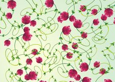 Free Rose Floral Pattern Royalty Free Stock Photography - 7061777