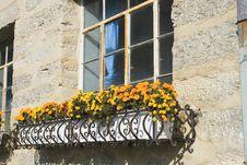 Free Windows Stock Photo - 7062340