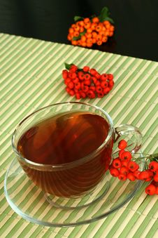 Free Tea And Berries Royalty Free Stock Photos - 7062438