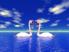Nature And Swans Stock Photography