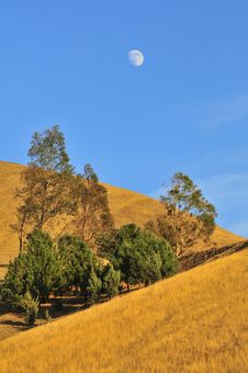 Free Grassy Hillside With Moon In Blue Sky Stock Photo - 7066740
