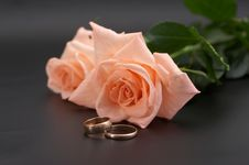 Free Rose And Wedding Rings On A Black Background Stock Images - 7067064