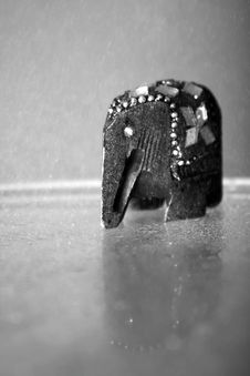 Free Elephant On Rain Stock Image - 7067121