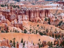 Free Bryce Canyon Stock Images - 7067704