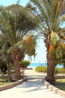 Resort At The Red Sea. Royalty Free Stock Image