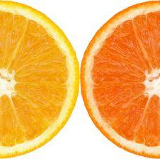 Free Coloured Orange Slince Stock Image - 7068821