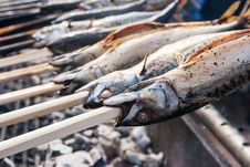 Fish Cooking On Hot Coals Royalty Free Stock Image