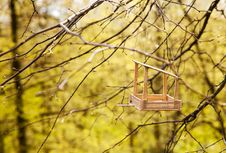 Free Feeding Trough For Birds On A Tree Royalty Free Stock Image - 70892106