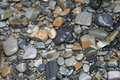 Free OCEAN BED OF STONES Stock Photo - 710660