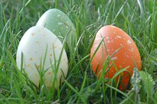 Free Three Speckled Eggs Stock Photography - 710442