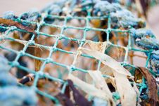 Washed Up Lobster Pot 1 Stock Images