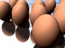 Free Eggs 12 Royalty Free Stock Images - 711739