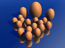 Free Eggs 22 Royalty Free Stock Images - 711749