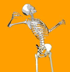 Free Bone 145 Stock Photography - 711922