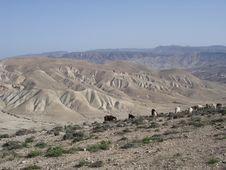 Free Rolling Hills In Jordan Stock Photo - 713300