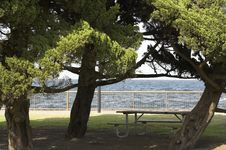 Free Picnic Table Stock Photography - 716322