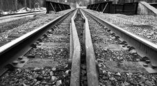 Free Railway Tracks Royalty Free Stock Photography - 718877