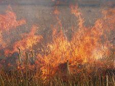 Free Fire Royalty Free Stock Photos - 719148