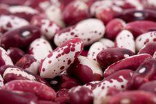 Free Kidney Beans Stock Photos - 7116283