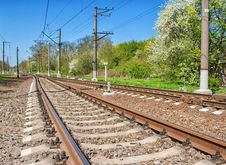 Free Railway Receding Into The Distance Royalty Free Stock Photography - 71371007