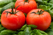 Tomato And Basil Royalty Free Stock Image
