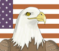 Free American Eagle Royalty Free Stock Image - 724166