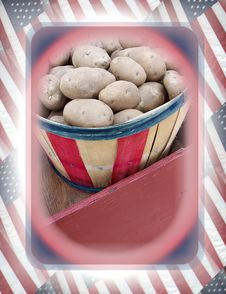 Free American Potatoes Stock Photo - 720380