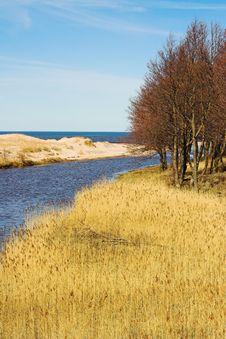 Free Estuary Royalty Free Stock Image - 722576