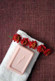 Free Soap Stock Photo - 724570