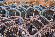 Free Colorful Lobster Pots Stock Photos - 728663