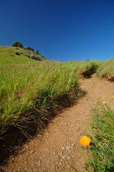 Free Mt Tamaplais Trail Royalty Free Stock Image - 729726