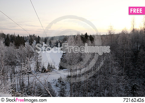 Free Trees In Cold Winter Day Royalty Free Stock Image - 72162426