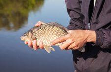 Free Fisherman Holding Carp Royalty Free Stock Images - 72186709