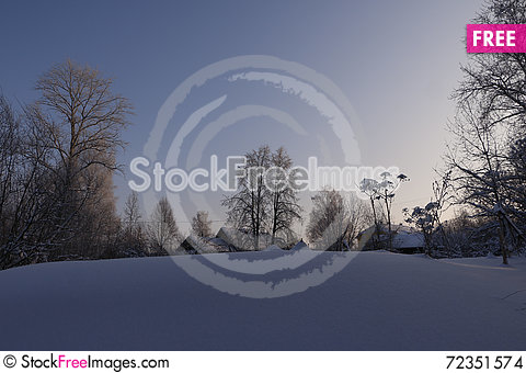 Free Trees In Cold Winter Day Stock Images - 72351574
