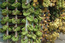 Free Banana Royalty Free Stock Photos - 7259248