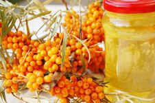 Free Sea-buckthorn Fruits And Honey Royalty Free Stock Photography - 7288967