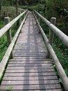 Free A Wooden Bridge Stock Photography - 738752