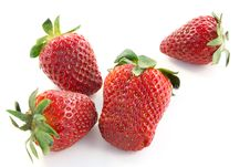 Free Ripe Strawberry Royalty Free Stock Photography - 731117